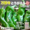 京野菜 京都から産地直送  万願寺とうがらし 1kg お米300gつき 京都 山城産