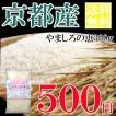 お一人様1点限り うるち米(精白米)  特別栽培米 やましろの恵  京都府山城産ヒノヒカリ 一等米 お試しパック300g(郵送)