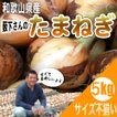 新たまねぎ 新玉ねぎ 和歌山県産 特別栽培  薮下さんの 訳あり 新玉葱 5kg サイズ不揃い、ご自宅用