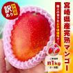 300セット限定 宮崎県産 完熟マンゴー 1kg(2〜3個前後) 訳あり お試し お徳用 家庭用 母の日 父の日