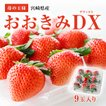 【イチゴの王様】おおきみDX(9玉サイズ)期間限定販売!