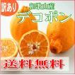 紀州産 濃厚ジューシー デコポン(不知火)/訳あり・ご家庭用 4.5kg