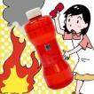 (即日発送) 投てき型消火用具 ラクシーシンプル (FP-S 投てき型消火器 消火ボトル 投げる消火器 消火剤)