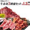 焼肉セット バーベキュー  肉 牛赤身3種盛り ハラミ ヘレロース ジューシーカルビ 3-4人前 計1.2kg 送料無料 BBQ