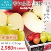 サンふじ りんご 青森県 リンゴ 3kg 特A 9~12玉 産地直送 送料無料