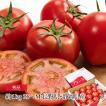 トマト 高糖度フルーツトマト アメーラ 秀品 約1kg 2S...