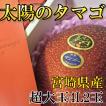 完熟宮崎マンゴー  『太陽のタマゴ』 超大玉4L2玉 送料無料 完熟宮崎マンゴー ご予約5月以降