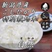 新米 お米 5kg 新潟産 コシヒカリ 特別栽培米 自然コシヒカリ 5kg×1袋 送料無料 令和2年産 米 白米