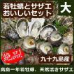 ギフト 高島の一年若牡蠣・サザエのおいしいセット(大) 安心の調理レシピ付 送料無料 九十九島 よか魚