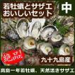ギフト ギフト 高島の一年若牡蠣・サザエのおいしいセット(中) 安心の調理レシピ付  九十九島 よか魚