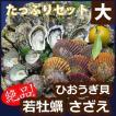 【送料無料】高島の一年若牡蠣(カキ)・天然活サザエ・ヒオウギ貝・たっぷりセット(大)貝類3種
