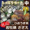 【送料無料】味と安心の高島の一年若かき・天然活サザエ・ヒオウギ貝のたっぷりセット(中)貝類3種