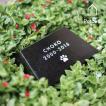 ペットのお墓 Seki-sui 石錐M 黒 Petcoti ペットコティ 手元供養 メモリアル ペットロス癒し お盆 お彼岸