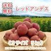 減農薬栽培 じゃがいも < レッドアンデス >  北海道産 じゃがいも  ( S 規格  5 kg)≪ 農家直送 ≫  ようてい山麓ルスツ産  じゃがいも