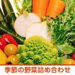 【野菜 詰め合わせ】皇室献上農家が作る季節の野菜 箱詰め 2.5キロ ご自宅用