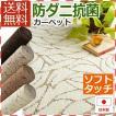 カーペット 6畳 ラグ ラグマット 絨毯 じゅたん 261×352cm おしゃれ 防ダニ 抗菌 日本製 ビリーブ(N)