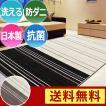 洗えるラグ モダンラインラグカーペット 190×240cmwill ウィル 日本製