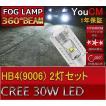 HB4(9006) 30W ハイパワー フォグランプ専用LED 左右2個セット[1年保証][YOUCM]