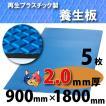 【ワニ印】ダイヤボード(RPボード)無発泡養生プラスチックベニヤ板・青<2mm厚>900×1800mm【5枚】《送料無料》【54.000円以上ご購入で3%値引き】(005000)