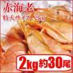 赤海老 刺身用 特大サイズ(L1) 業務用 アルゼンチン赤エビ (約30尾)2kg