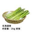 北海道産グリーンアスパラ・2kg前後(Lまたは2Lサイズ)