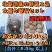予約 北海道産 野菜セット 2品 新じゃが きたあかり キタアカリ 北あかり 5kg かぼちゃ 3kg 2個から3個 程度 (合計 8kg 前後)秋の味覚 秋の野菜 秋野菜