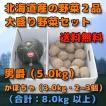 北海道産 野菜セット 2品 合計 8kg 前後 (男爵 【5kg だんしゃく ダンシャク 新じゃがいも】 かぼちゃ 【3kg 2個から3個程度】)