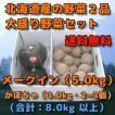 北海道産 野菜セット 2品 合計 8kg 前後 (メークイン 【5kg 新じゃがいも】 かぼちゃ 【3kg 2個から3個程度】)