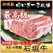 牛肉 高級黒毛和牛 希少な石垣牛  特撰 ロースステーキ A5・4クラス 500g/ゆいまーる牧場 沖縄