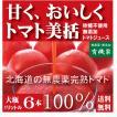 完熟トマトジュース  無農薬(無塩・無添加)北海道江本自然農園 1L×6本
