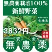 無農薬野菜詰め合わせ 旬の無農薬100%野菜セット 2000円