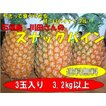 石垣島スナックパイン3玉(3.2k以上