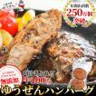 お中元 ギフト 贈答 ハンバーグ 冷凍 肉 牛肉 無添加 牛100% ゆうぜんハンバーグ 150g×2個入 真空 グルメ お試し