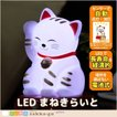電池式 軽量 LEDライト まねきらいと まねきねこ 招き猫 運 LED ライト