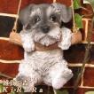 犬の置物 シュナウザー リアルな犬の置物 ブランコドッグ Aタイプ 子いぬのフィギア イヌのオブジェ ガーデニング 玄関先 陶器