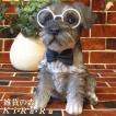 犬の置物 シュナウザー リアルな犬の置物 ダンディードッグ 子いぬのフィギア イヌのオブジェ ガーデニング 玄関先 陶器