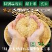 令和元年産 新米 産地直送 市場に出回りにくい 萩原農場 の 特別栽培米 多古米 コシヒカリ 【玄米】 3kg