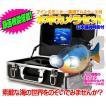 録画機能搭載 HD 600TVL 水中ビデオカメラセット 7インチカラー液晶モニター 充電式 20m