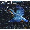 カワセミ―青い鳥見つけた (日本の野...