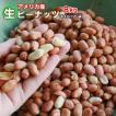 生ピーナッツ10kg (500g×20袋セット) アメリカ産 無添加 薄皮付きピーナツ