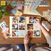 ましかくポケットアルバム 6ポケット 168枚収納 大容量 選べる5色 写真 フォト 写真整理 エコー写真 ベビー かわいい おしゃれ [M便 12/25]