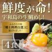 【送料無料】【漁港直送】宇和島生鯛めし 8人前 お試し 鮮度ばつぐん #鯛たべよう伊達真鯛 新鮮 鮮度が命 高級卵かけごはん