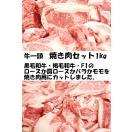 新商品特価 北海道産 黒毛和牛焼き肉セット 1kg