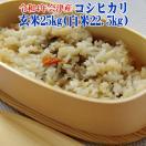 コシヒカリ 玄米25kg 送料無料地域あり 30年会津産小分け玄米10kgx2 5kgx1 (白米22.5kg )