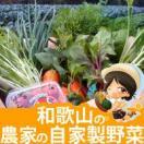 10点以上!農家の自家用野菜詰め合わせセット【野菜セット】【和歌山県産】