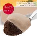 クリスマスケーキ 濃厚チョコレートケーキ たっぷりのチョコ生クリーム 3〜4人分 アマリア生ショコラ1本