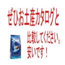 バッチ チョコレート (10粒入り)(イタリア お土産 おみやげ)
