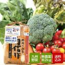 無農薬のお米と九州野菜セット 【送料無料...