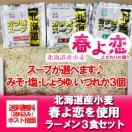 「Yahoo限定 生ラーメン」北海道の生ラーメンを送料無料 生麺 北海道産小麦 生ラーメン 3食セット(ラーメンスープ/醤油/味噌/塩/3種から3つお選び下さい) 500 円
