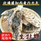 規格外ハネ牡蠣/知内産/生牡蠣(殻付き 生食)/訳あり/5kg詰(約40~70個入)/期間限定ポイント10倍